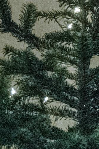 Our christmas tree in grainy detail