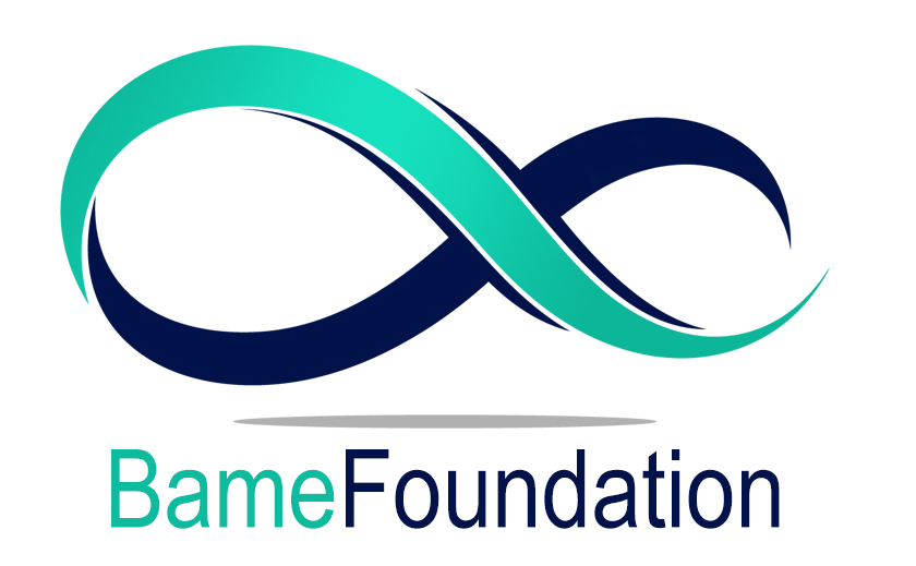 OUR MISSION is Synergizing people and resources to empower our communities by cultivating servant leadership, growth and grace. OUR VISION is to Inspire servant leadership beyond generations.   http://www.bamefoundation.org/