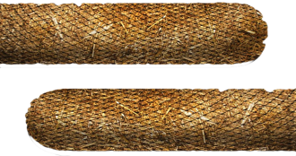 straw-wattle-fargo.png