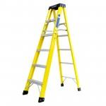 Titan step-ladders.jpg