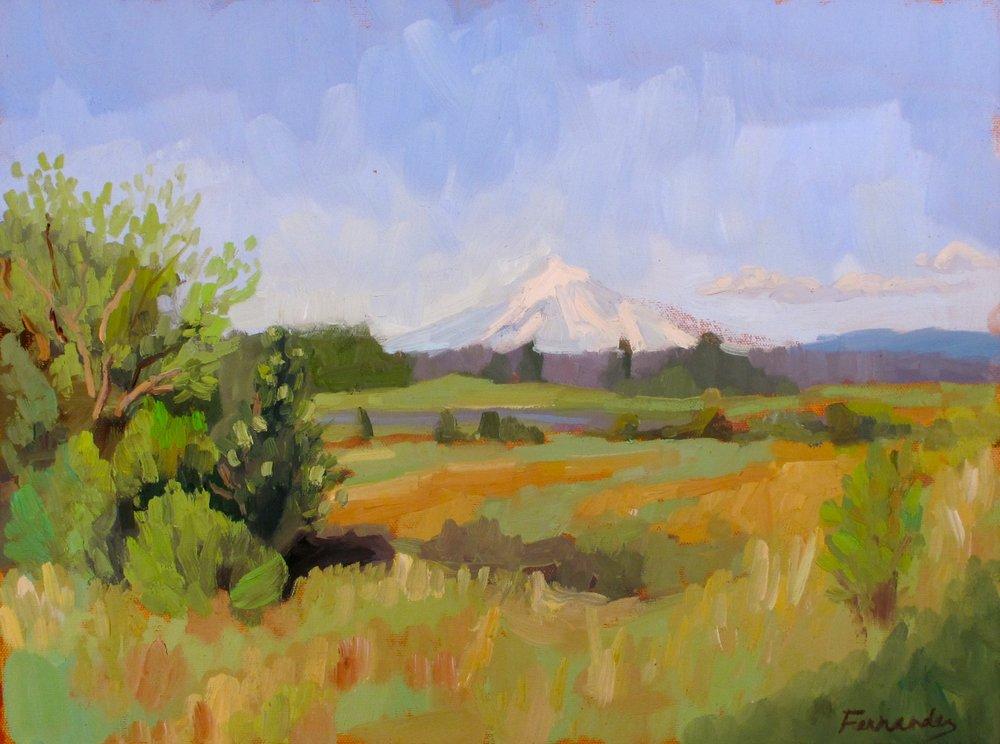Mt Hood from Tualitin