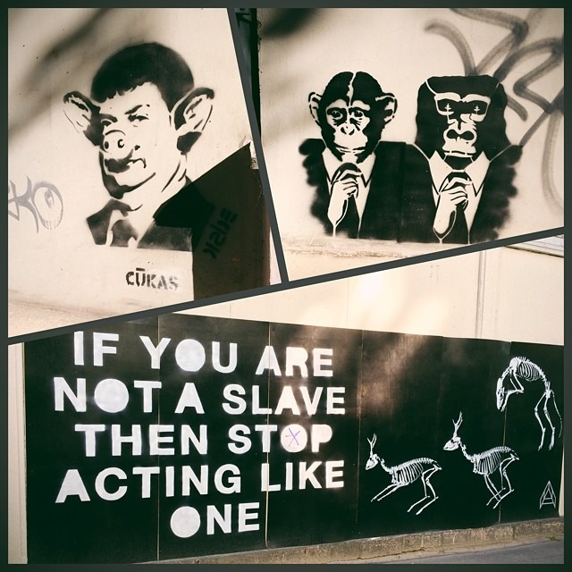 #Riga #Latvia #streetart #graffiti #graffitiart #urbanart #vscocam 06 #moldiv