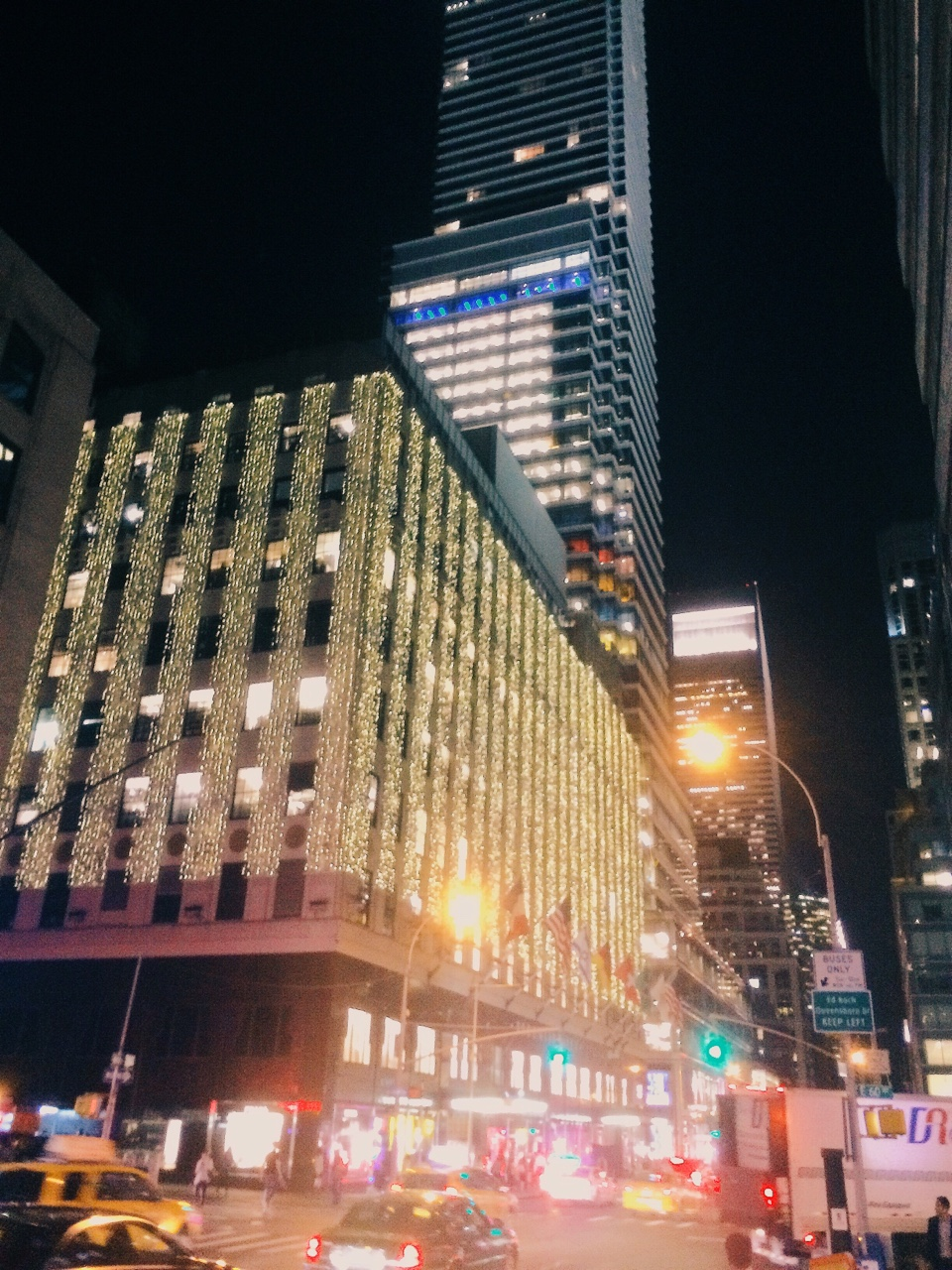 Bloomies at Night