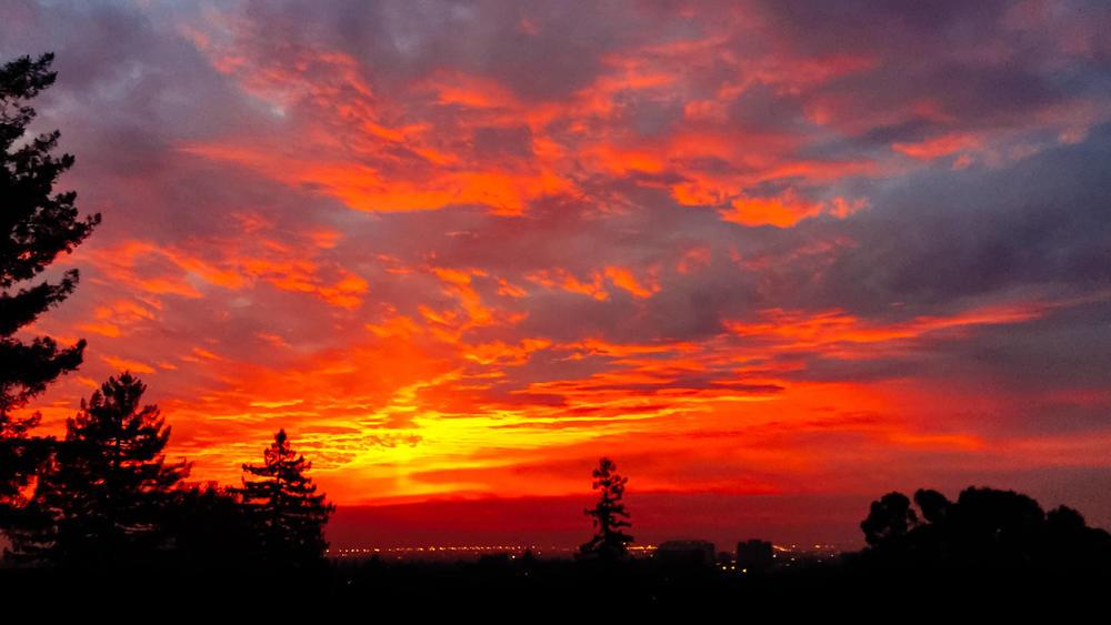 Piedmont, CA (Jan 2015)
