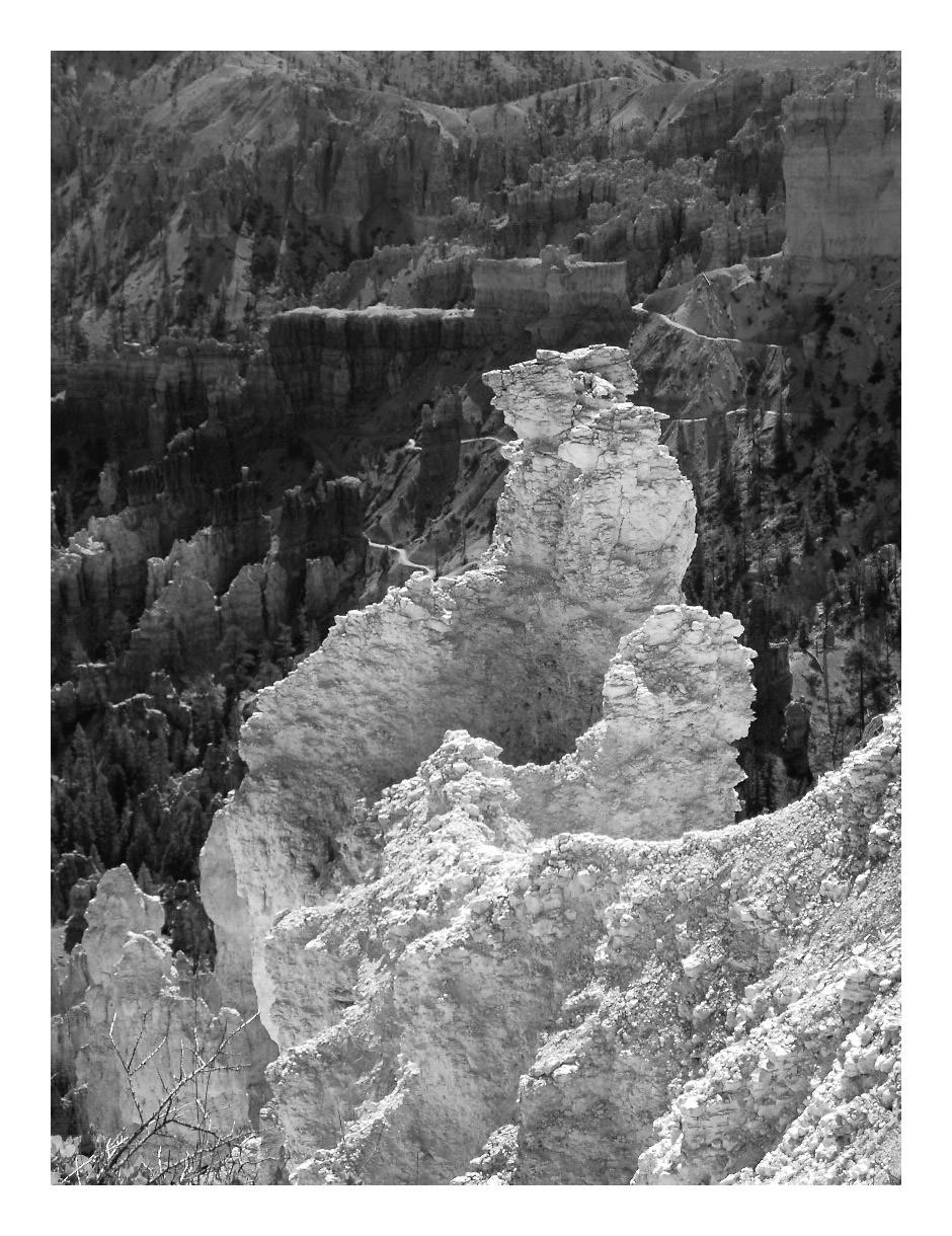 Bryce Canyon, Utah (June 2003)