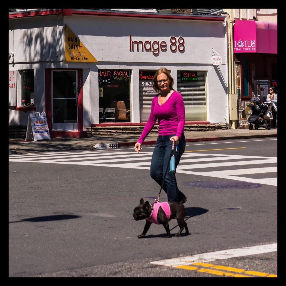 Piedmont Avenue, Oakland, CA (March 2016)