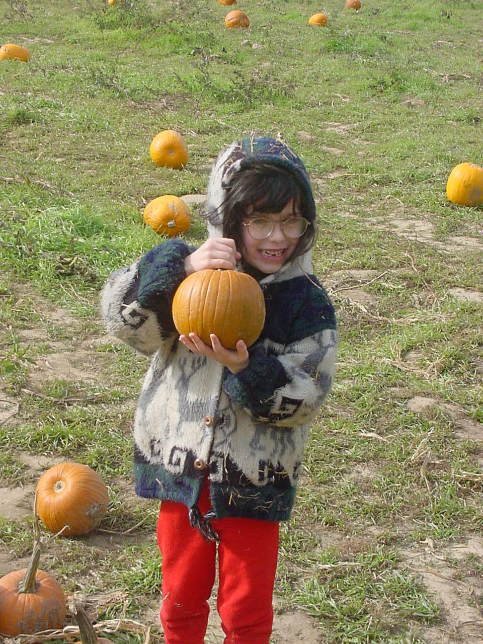 Finding pumpkins 05.JPG