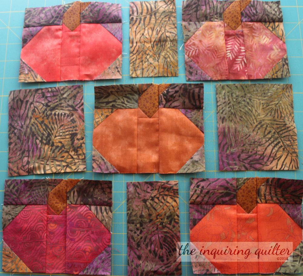 Pumpkin Patch 9.jpg
