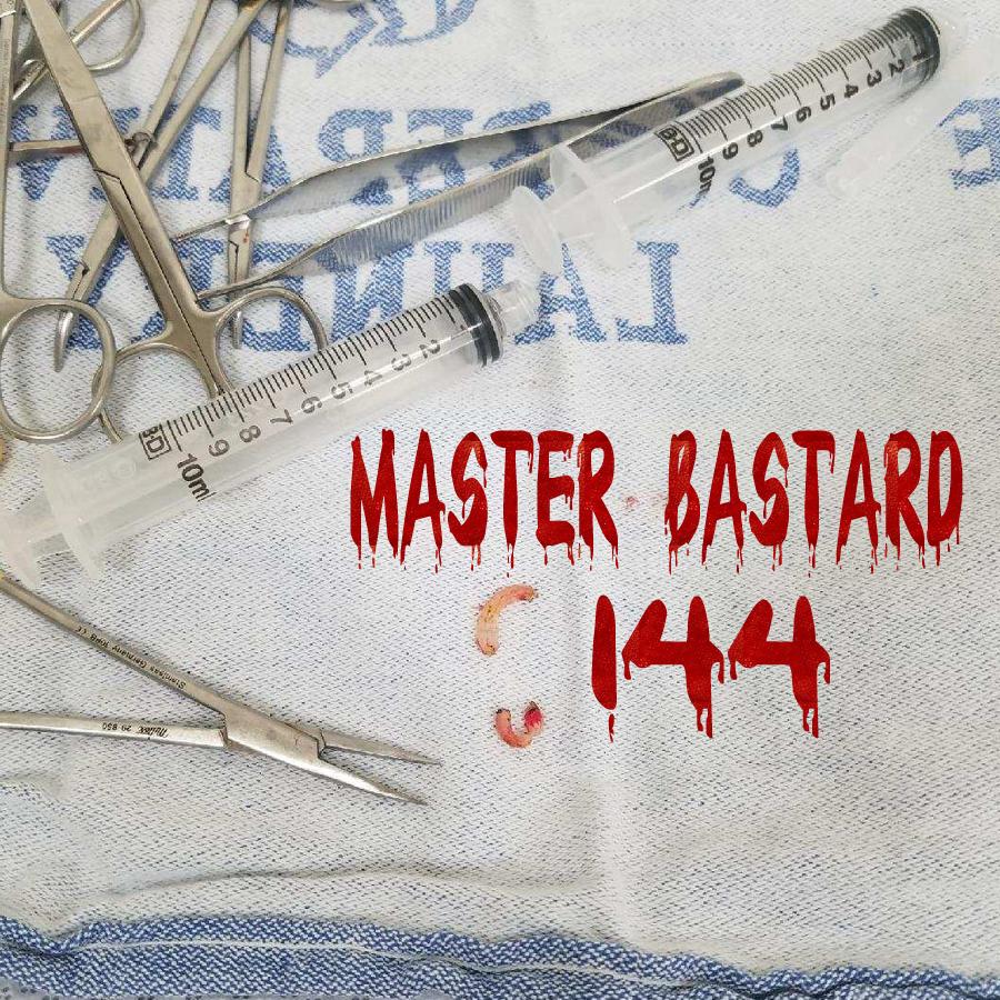 MasterBastard144.jpg