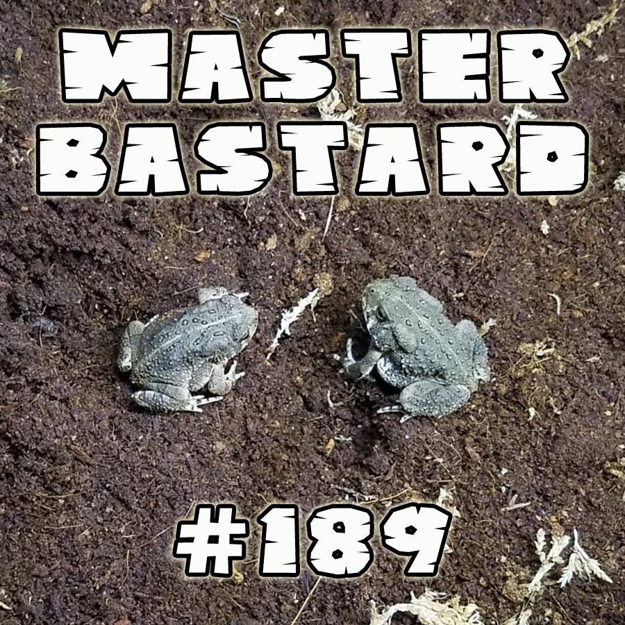 Master Bastard 189.jpg
