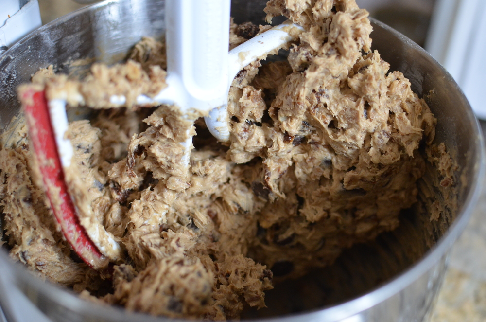 Now add the chunky stuff - raisins, granola, and chocolate chips.