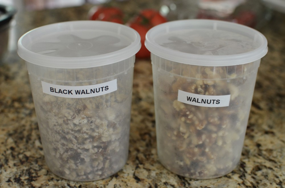 This recipe calls for English walnuts, but I think black walnuts taste amazing with chocolate so my plan was to make a half a batch with each.