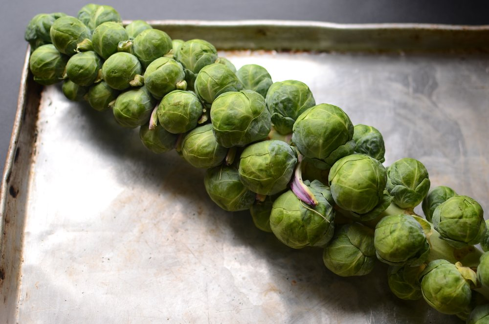 how to prepare brussel sprouts on the stalk
