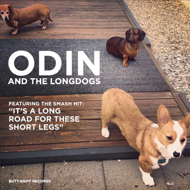 New album artwork for Odin's band.