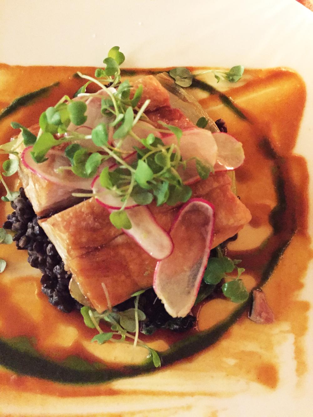 Niman Ranch Braised Pork Belly with creamy beluga lentils, sautéed bokchoy, and radish salad.
