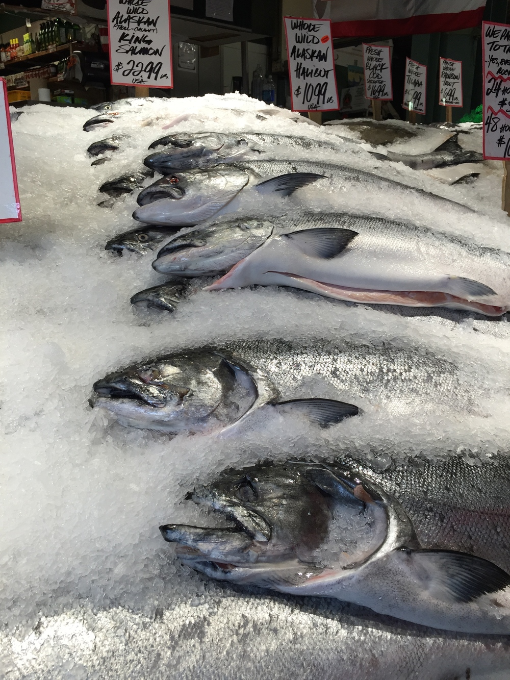 The freshest fish, of course!