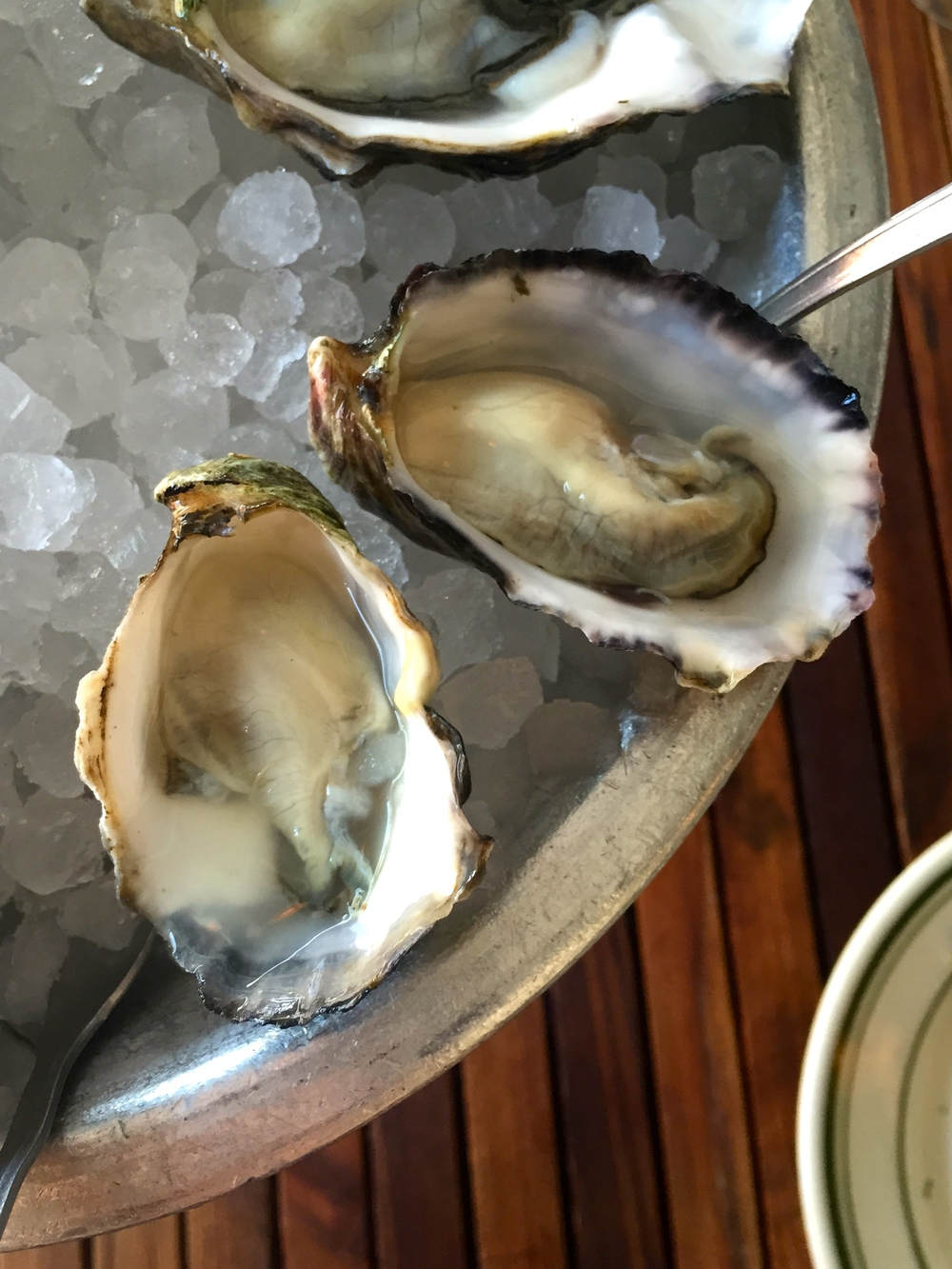 Pacific Gold Oysters, Morro Bay, CA - Neal Maloney