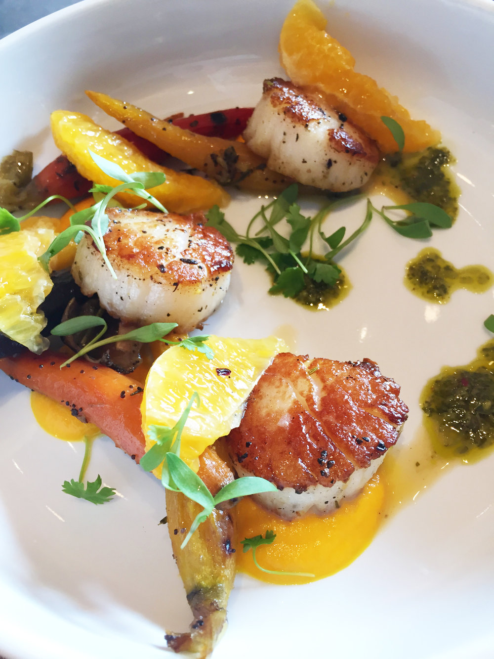 Sea Scallops | honey roasted carrot, orange segment, citrus, charmoula