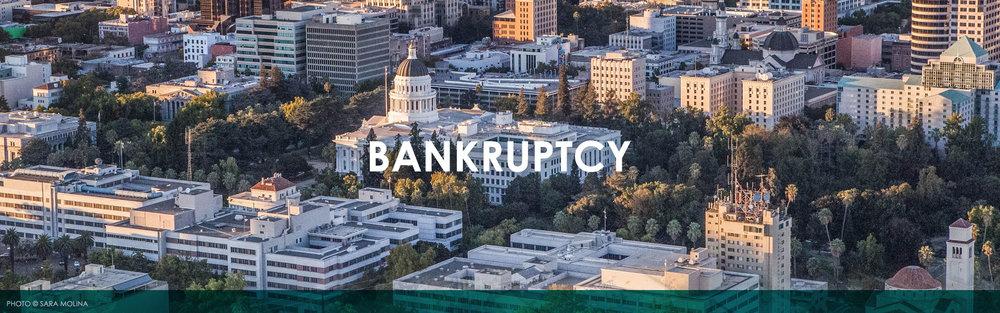 Amberg Harvey Chapter 12 Bankruptcy