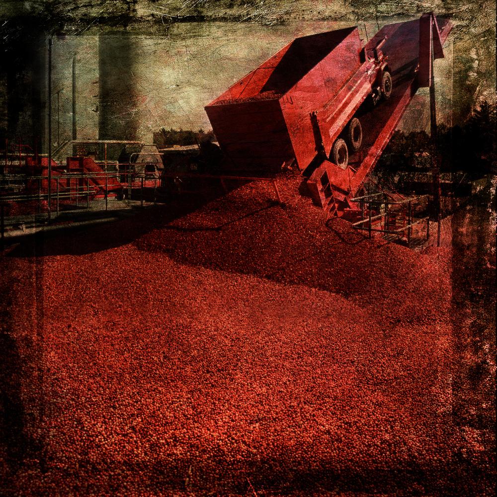 truck_dumping_cran.jpg