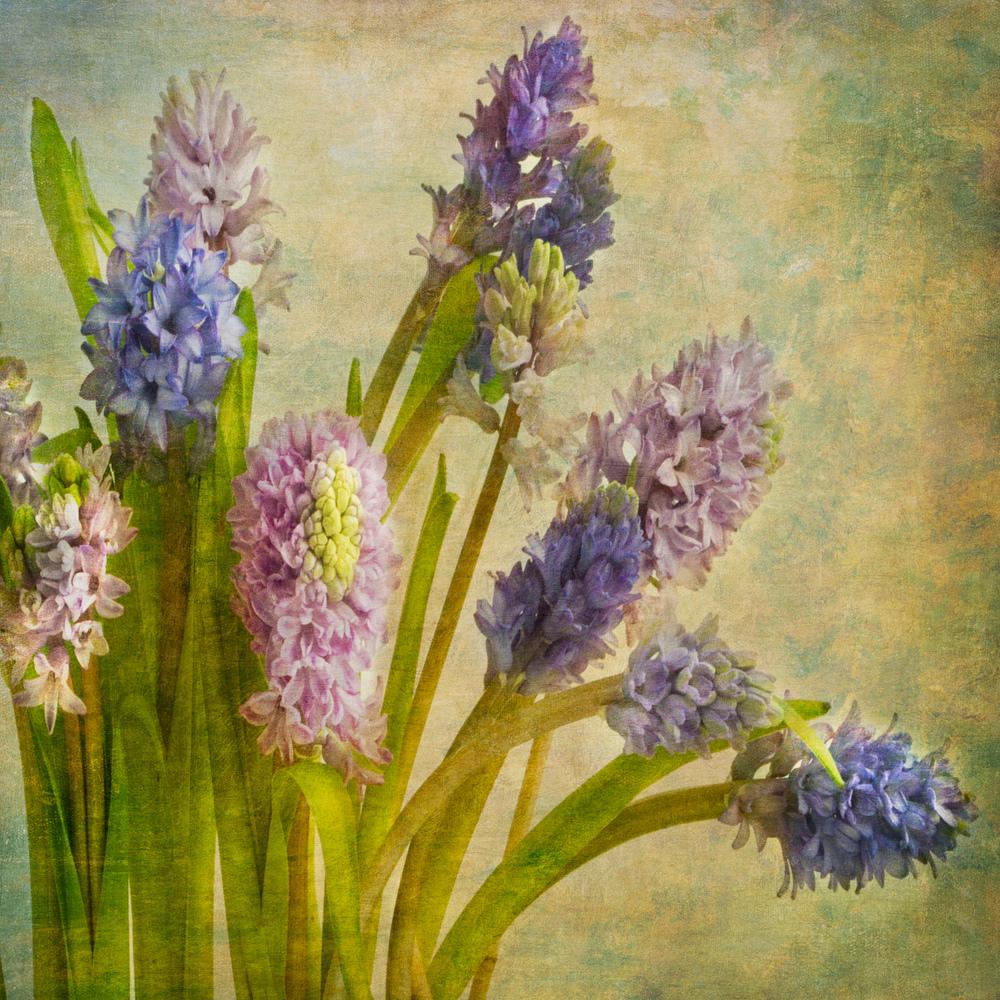 green flowersV4L_.jpg