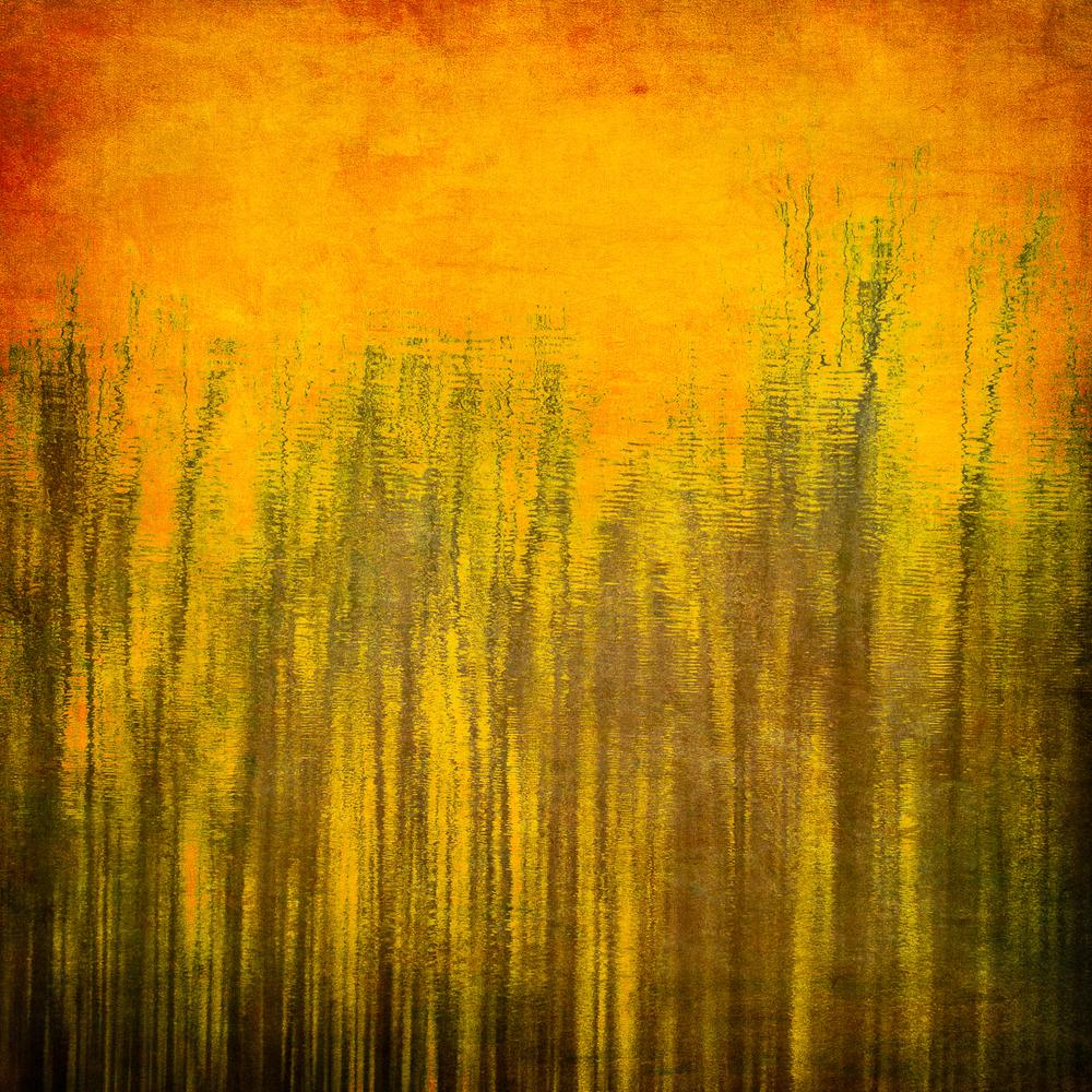 Reflections_9.jpg
