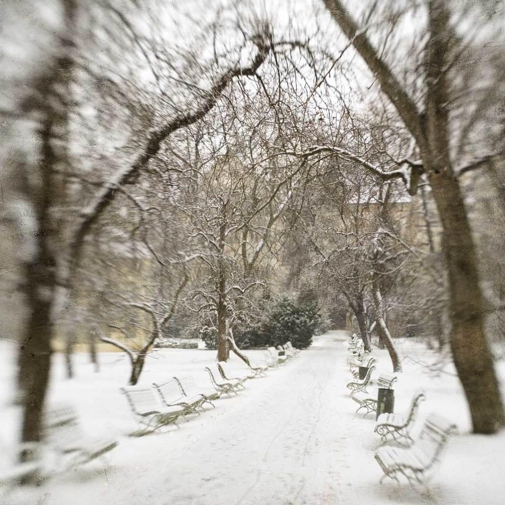 Bojanovy_Park2.jpg
