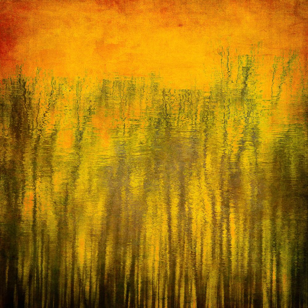 Reflections_11.jpg