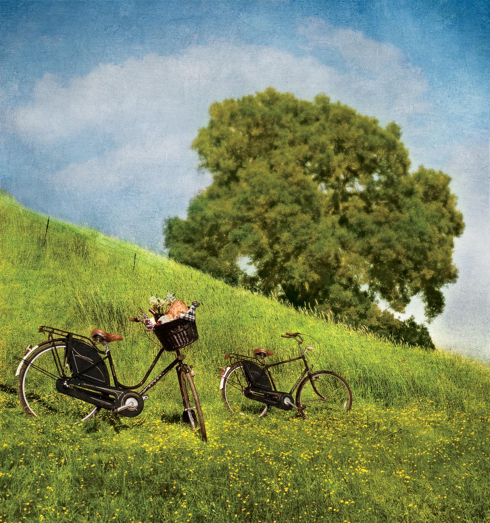 Bikes on hill final.r8.jpg