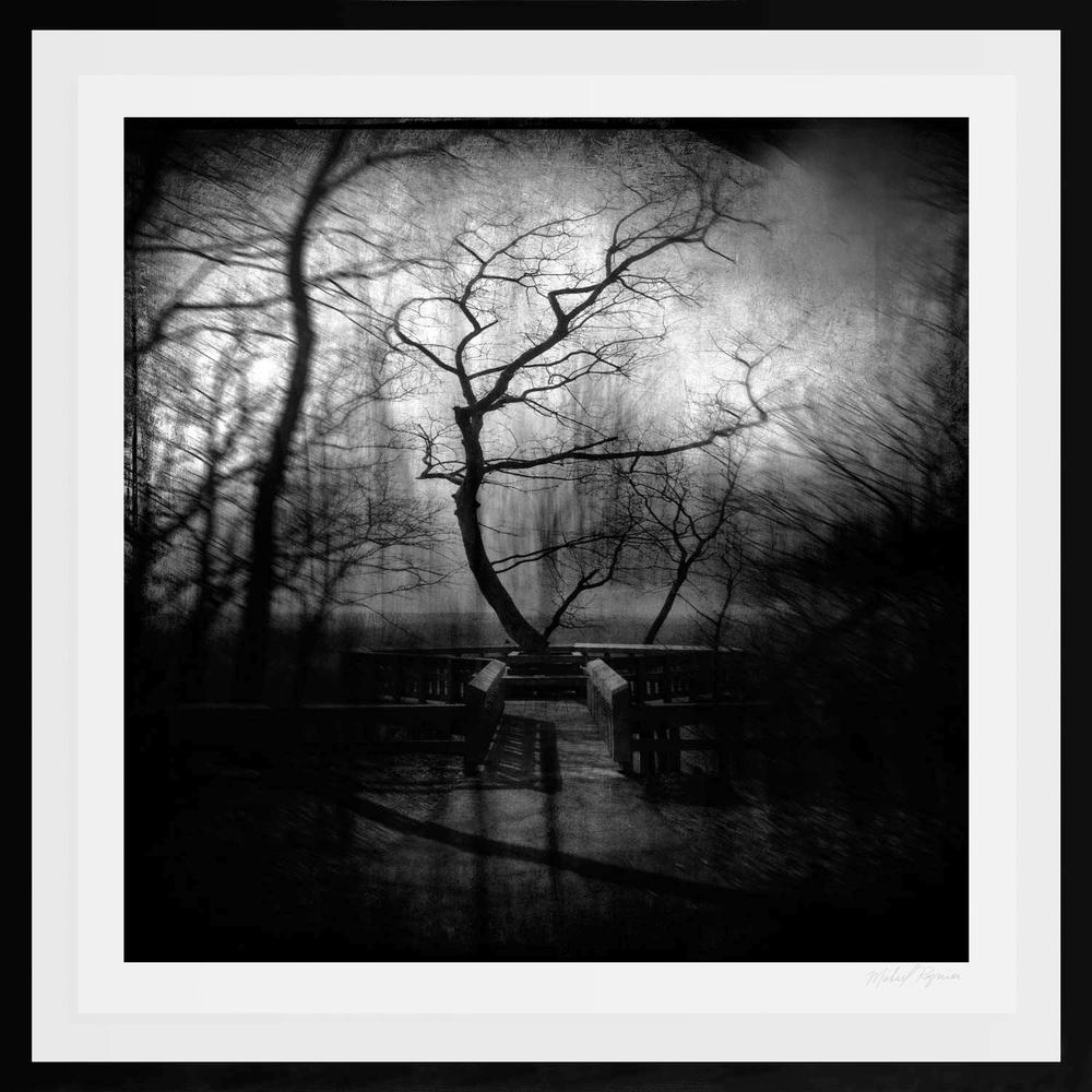 Altered Landscapes #5