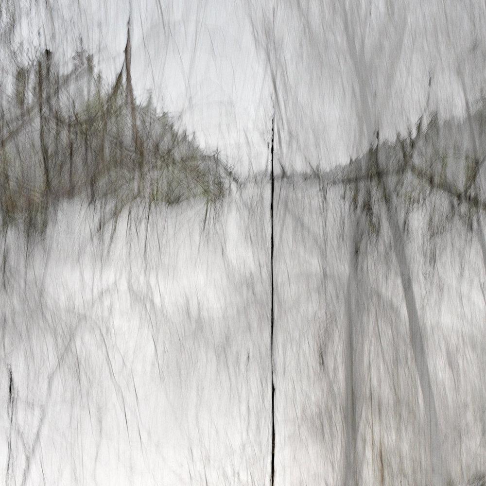 Altered Landscapes #8_36x36_cropV5_Print.jpg