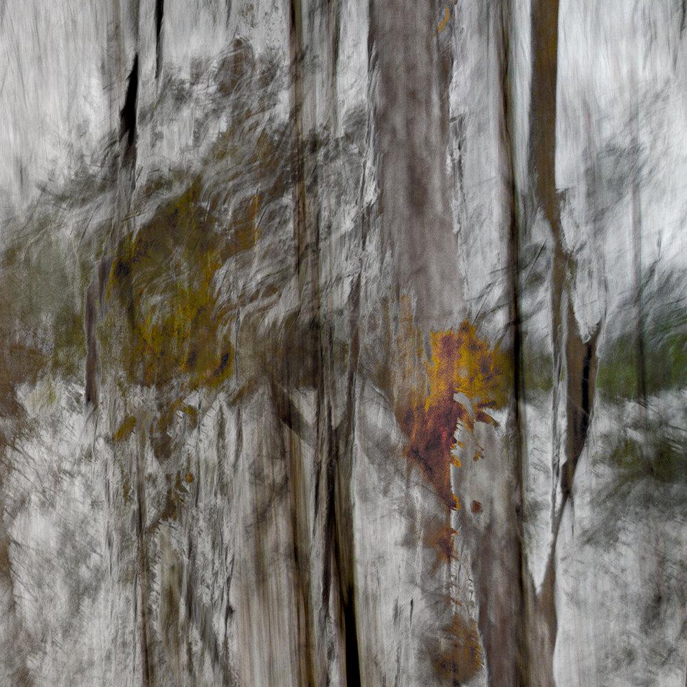 Altered Landscapes #8_36x36_cropV1_Print.jpg