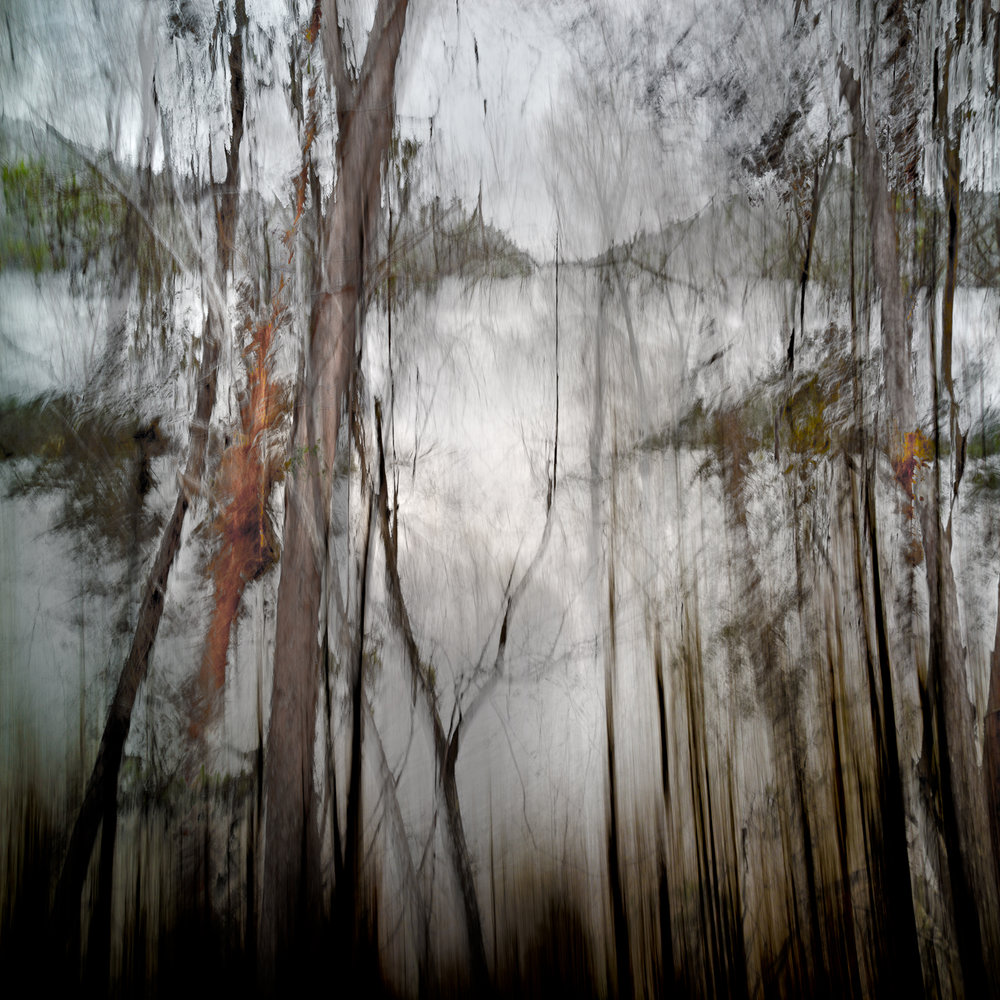 Altered Landscapes #8_36x36V3_Print.jpg