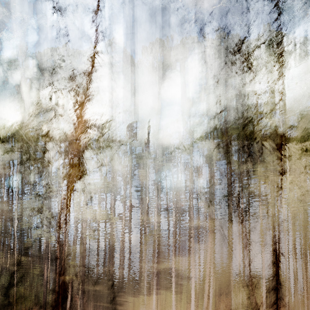 Altered Landscapes #10_36x36 Print.jpg