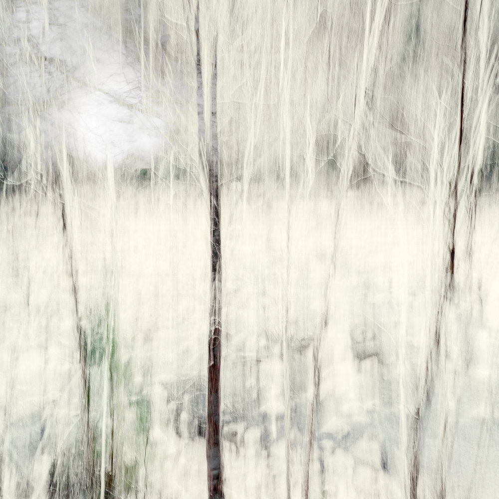 Altered Landscapes #17_V3_36x36 Print.jpg