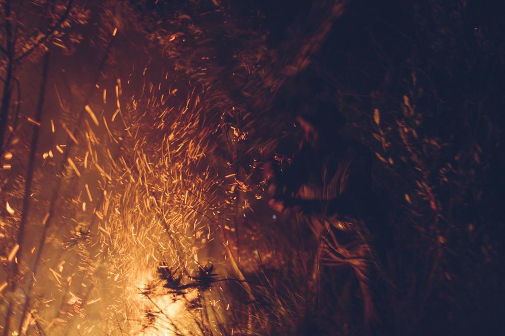 Bobby-Neptune-Laikipia-Fire-MedRes-_07A7060.jpg