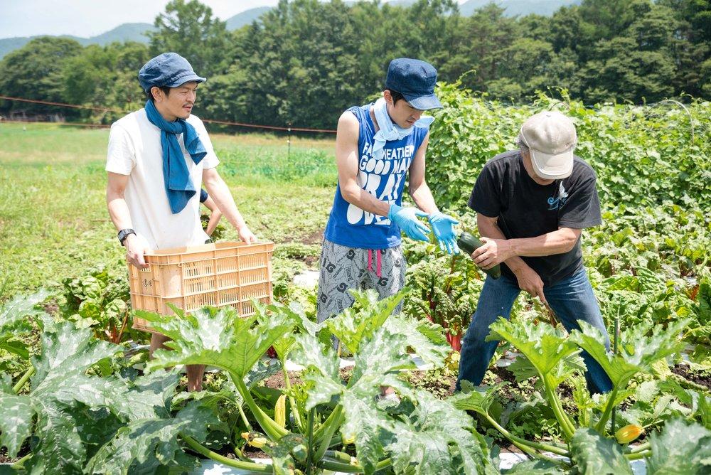 61-2018-07-16-KIYOSATO-BBQ.jpg