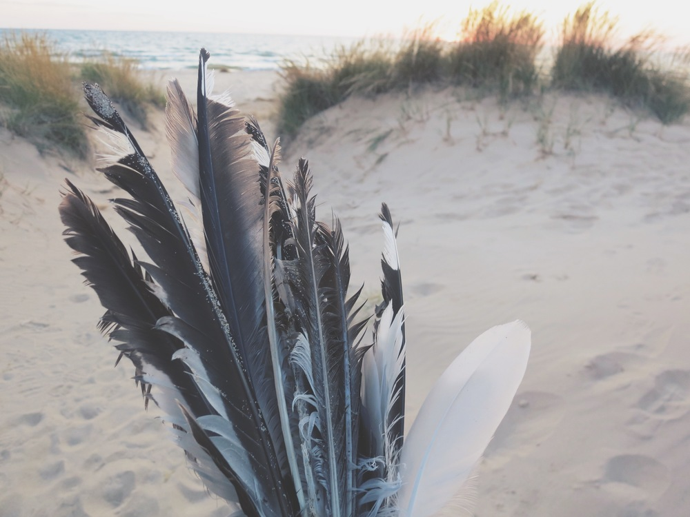 Collecting feathers on Lake Michigan beaches to make dreamcatchers.
