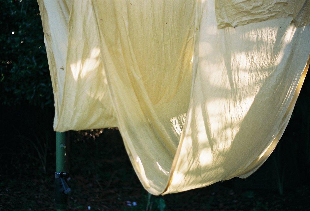 Silk Length, 2017