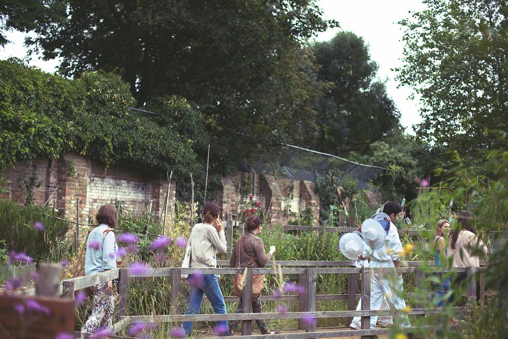 HoneyHarvest-57.copy.jpg