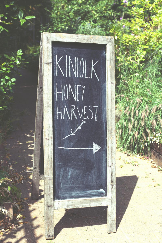 HoneyHarvest-87.copy.jpg