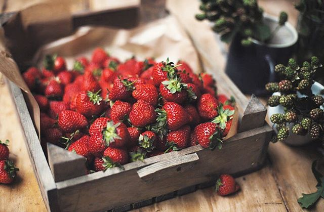 Coming to the end of the Strawberry season.... 🍓 Traditionally they were used as an aphrodisiac! These delicious things contain Vit C, Vit K, Manganese, Fibre, and folate plus phytonutrients  giving them anti-inflammatory status. Can be used as a natural teeth whitener, before you eat rub on your teeth! Also I've recently found out they are known to help with acne scarring and pigmentation 💚 These strawberries I captured a while ago at a @kinfolk gathering in London. . . . #strawberries #nature #naturalmedicine #healthy #health #nutrition #wellness #wellbeing #rootstoflourish #seasonal