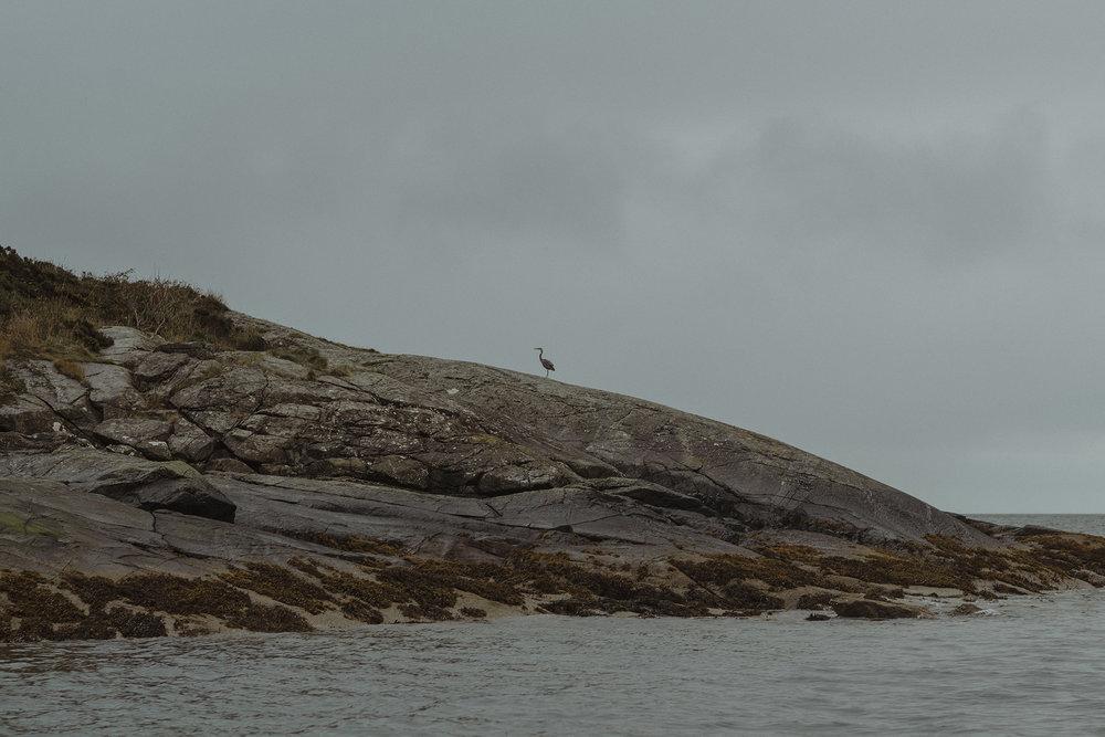 Loch Coruisk Elopement 20.jpg