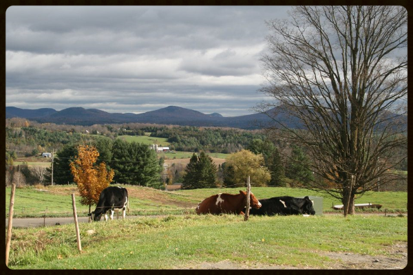 Fairmont Farm View