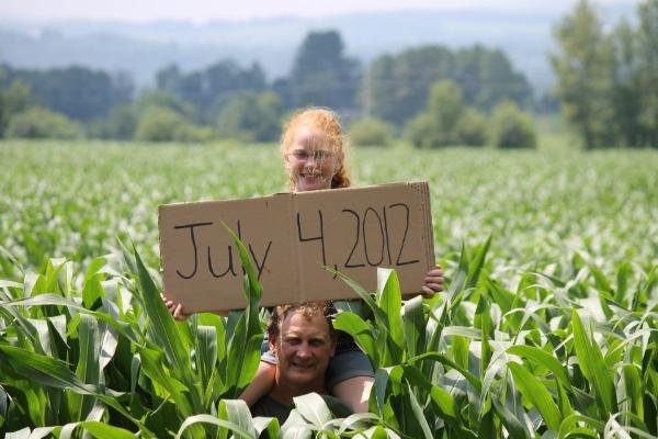 2012 Corn