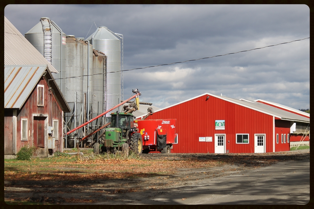 This farm was purchased in 2006 which has allowed us to continue growing our business.