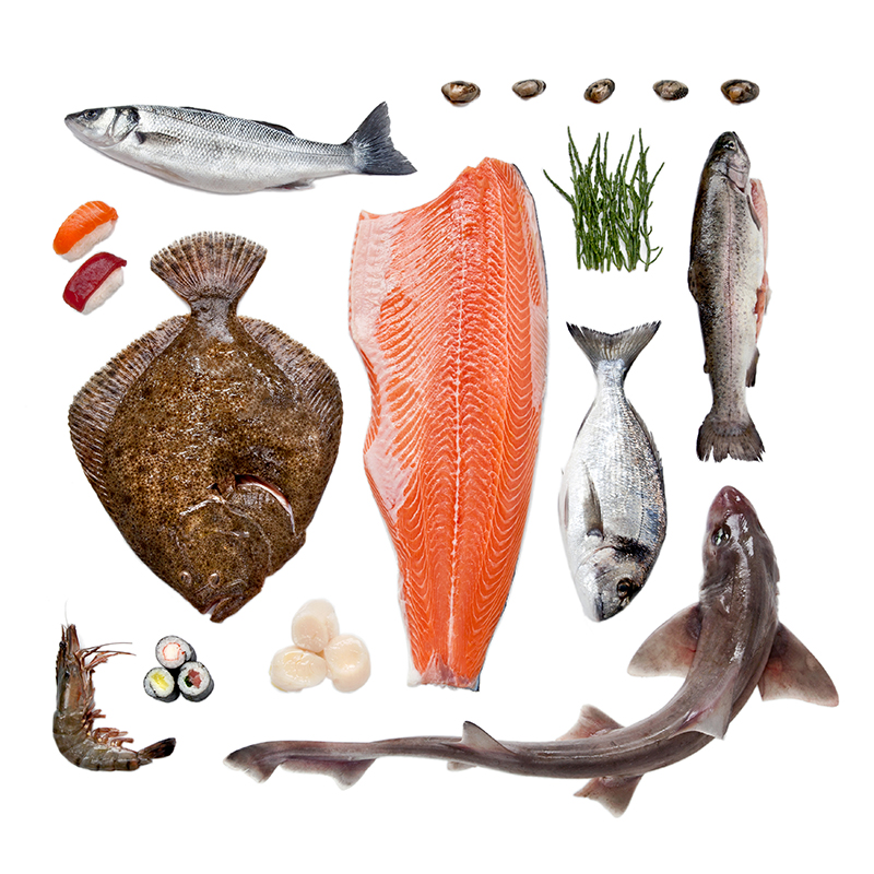 Visgroothandel-Seafood-Centre-Over.jpg