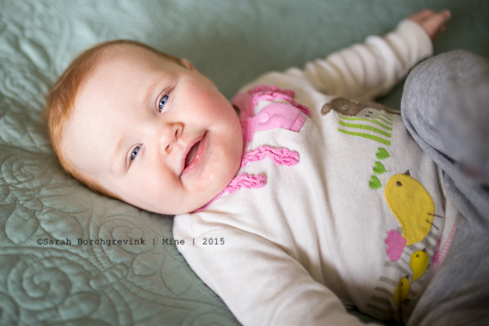 Houston texas child photographer. cypress, texas child photography. sarah borchgrevink photography.
