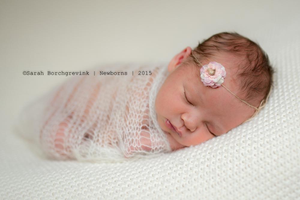 cypress tx newborn photographer