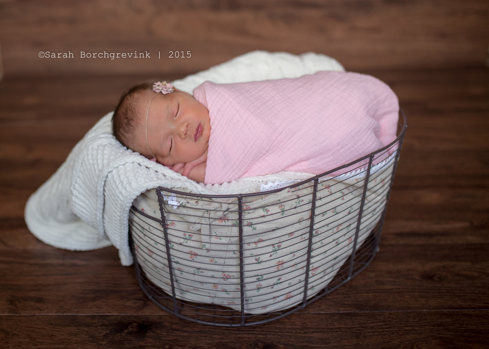 photography for cypress texas family